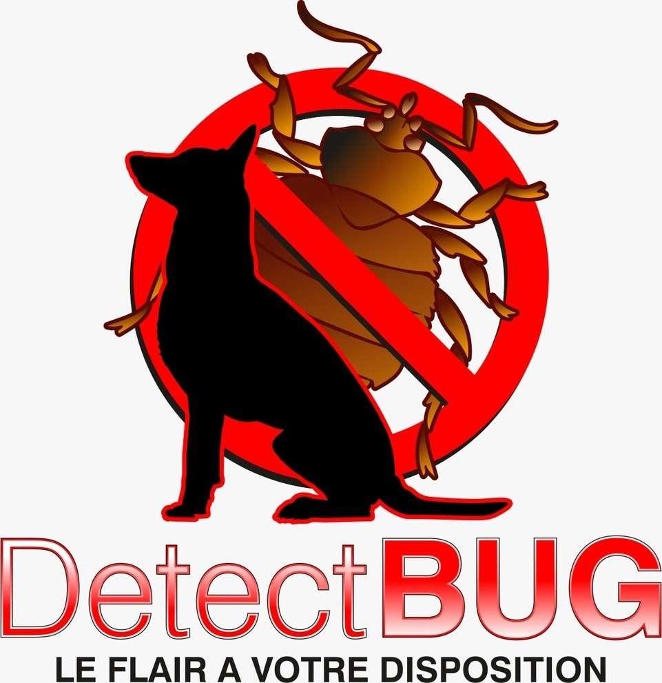 DetectBUG LE FLAIR A VOTRE DISPOSITION